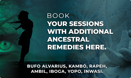 Book your sessions with additional ancestral remedies HERE.
